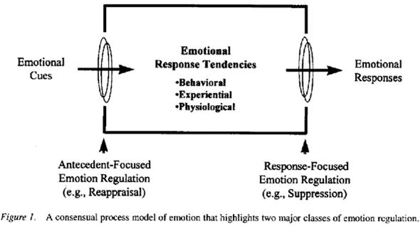 emotion-regulation-flow