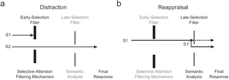 emotion-regulation-flow2
