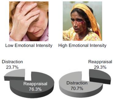emotion-regulation-percent