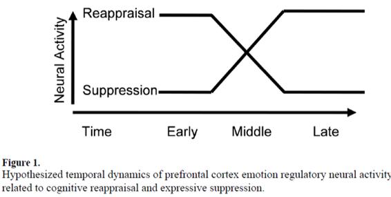 emotion-regulation-brain-activation