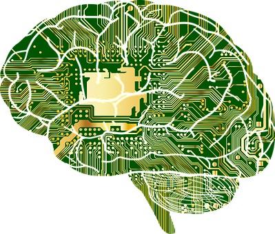 emotion-regulation-brain