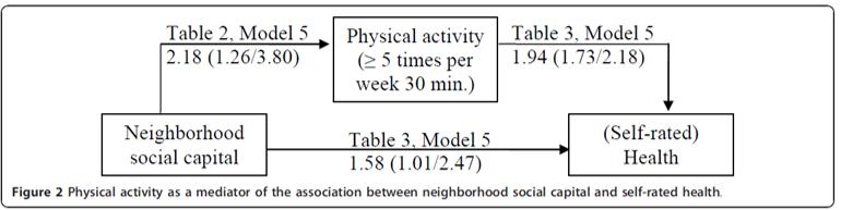 social capital physical activity