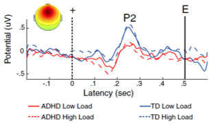 sustained attention vigilance EEG
