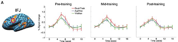 dual task training brain