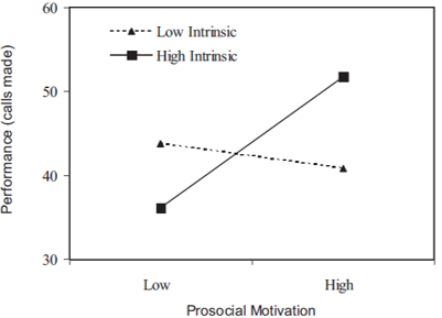 intrinsic motivation performance