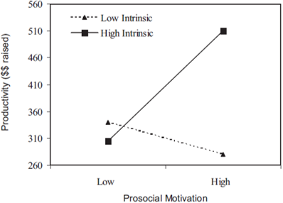 intrinsic motivation productivity