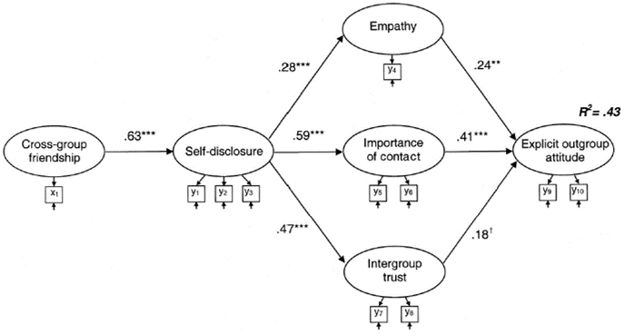 self-disclosure outgroup path