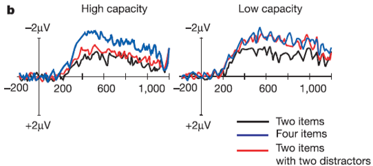working memory capacity high and low