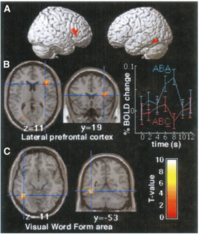 task switching prefrontal
