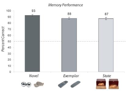 long term memory capacity