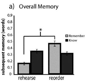 long term memory performance