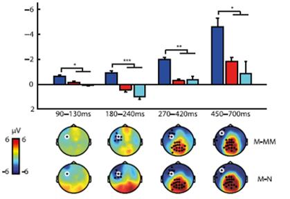 visual auditory prior knowledge EEG