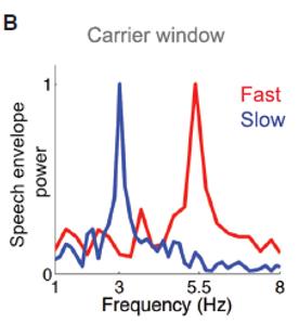 rhythm brain EEG sentence