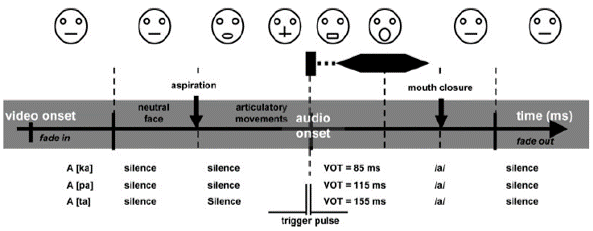 speech perception auditory and visual