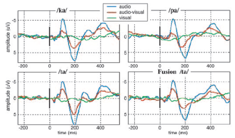 speech perception EEG auditory and visual