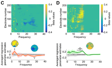 speech perception EEG oscillation