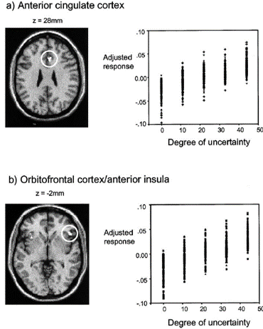 uncertainty decision making prefrontal