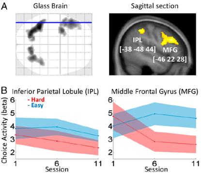ego depletion brain activation prefrontal