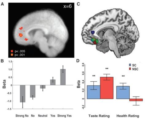 self-control food decision brain prefrontal