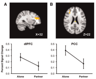 social ties brain prefrontal and PCC alone or partner
