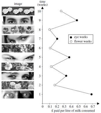 watching eye effect psychology in field research